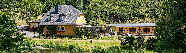 Laukenmühle-Sommer